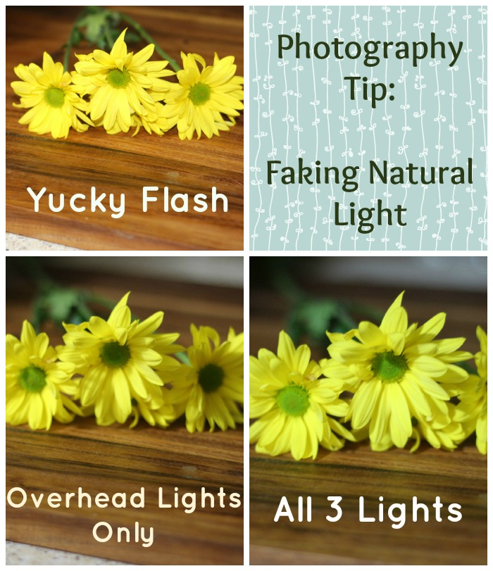 Photography Tips Faking Natural Light